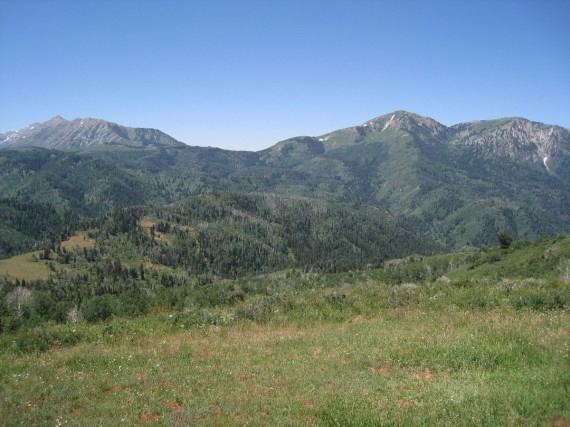Bald Mountain is bald because vegetation will not grow readily above 10,500 feet