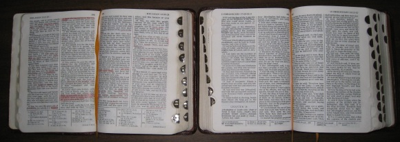 My Book of Mormon and Holy Bible