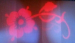 Image of the Pimpernel's flower on stage curtains.