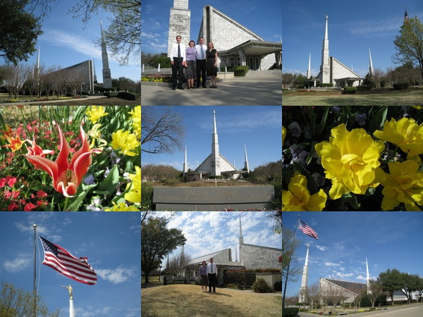 Dallas Temple Collage