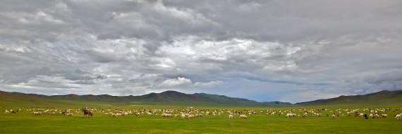 Near Ulaanbaatar, Mongolia