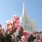 Photos on the New LDS.org Website
