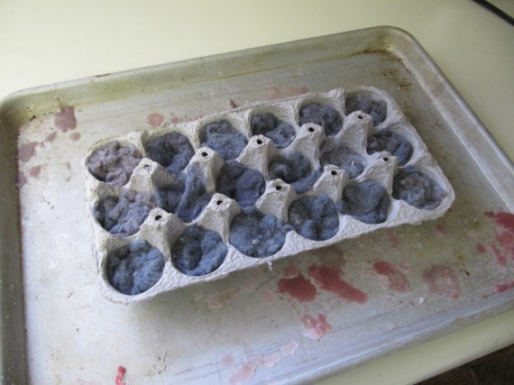 Egg carton with dryer lint
