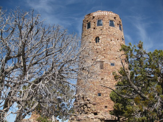 Grand Canyon Watchtower trees