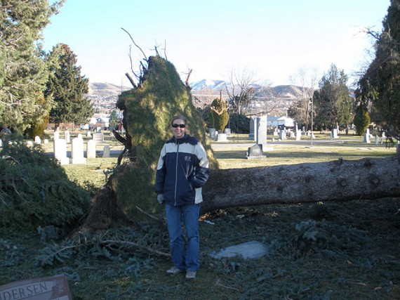 Davis County windstorm cleanup